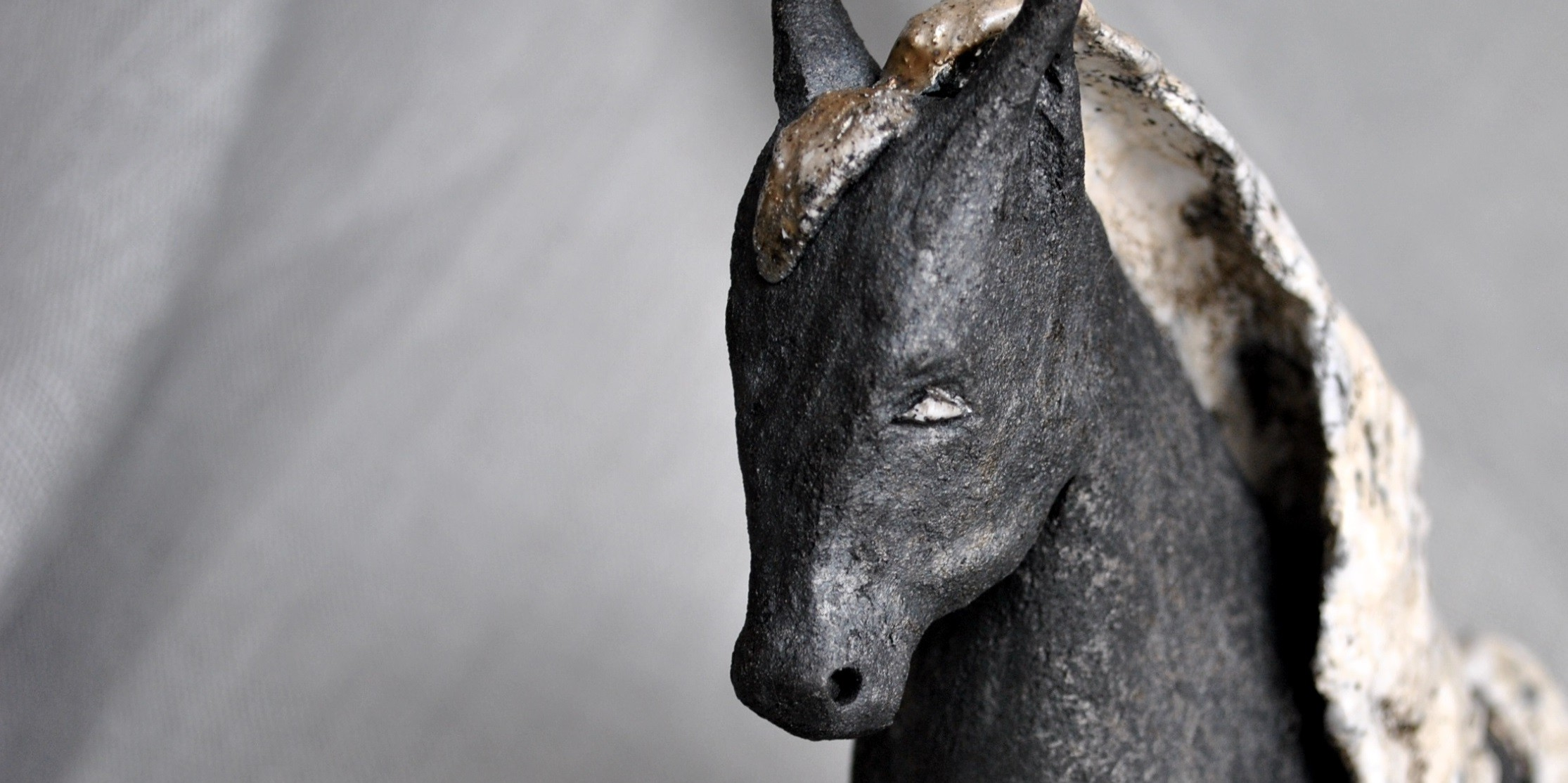 kary koń